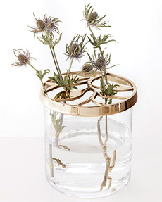 Vas Thistle Guld